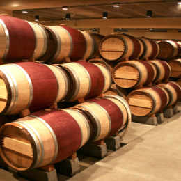 Vino lorem multais wine