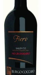 FIERO IGT SALENTO NEGROAMARO (145x500)