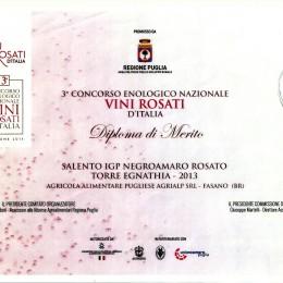 TORRE EGNATHIA 2013 Diploma di Merito 2014